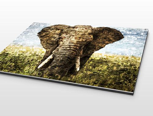 Foto mosaico aluminio dibond elefante