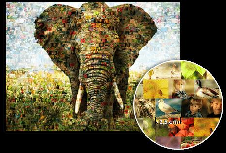 aterrizaje detalle mosaico elefante