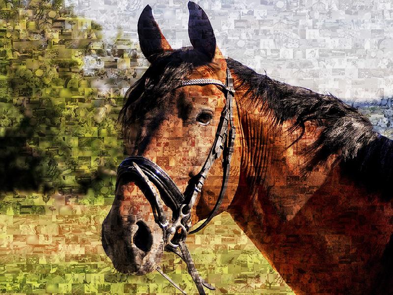 Mosaico de caballo